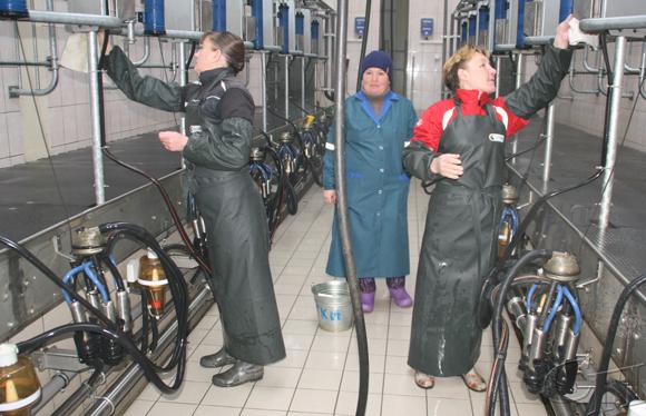 Лидерские позиции по производству молока в районе держит филиал «Лакнея» УП «ПриортрансАгро»