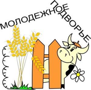 molodezhnoe_podvore_0