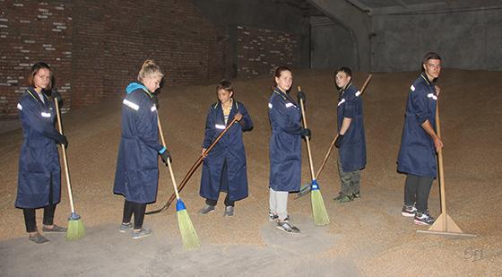 На базе ОАО «Семежево» на летних каникулах работал  сельскохозяйственный стройтряд «Огонек»