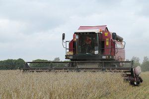 Завершили уборку зерновых и зернобобовых в ОАО «Пионер-Агро». Поздравляем!!!