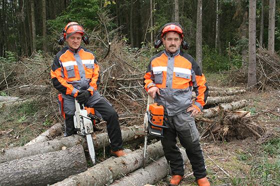 ■ Вальщики леса Орликовского лесничества Александр Баран и Николай Гриневич на разработке усыхающих насаждений