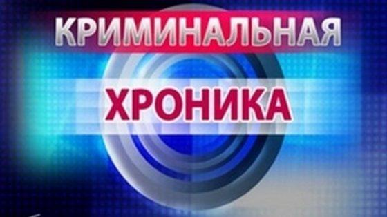 Криминальная хроника: по материалам Копыльского РОСК и Копыльского РОВД