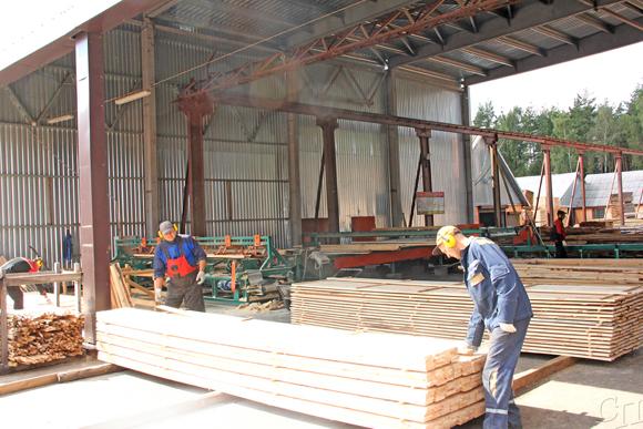Успешным был минувший год для работников Копыльского опытного лесхоза