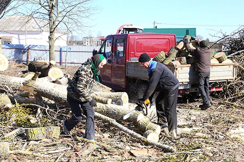 Наведение порядка в деревне Новоселки продолжается
