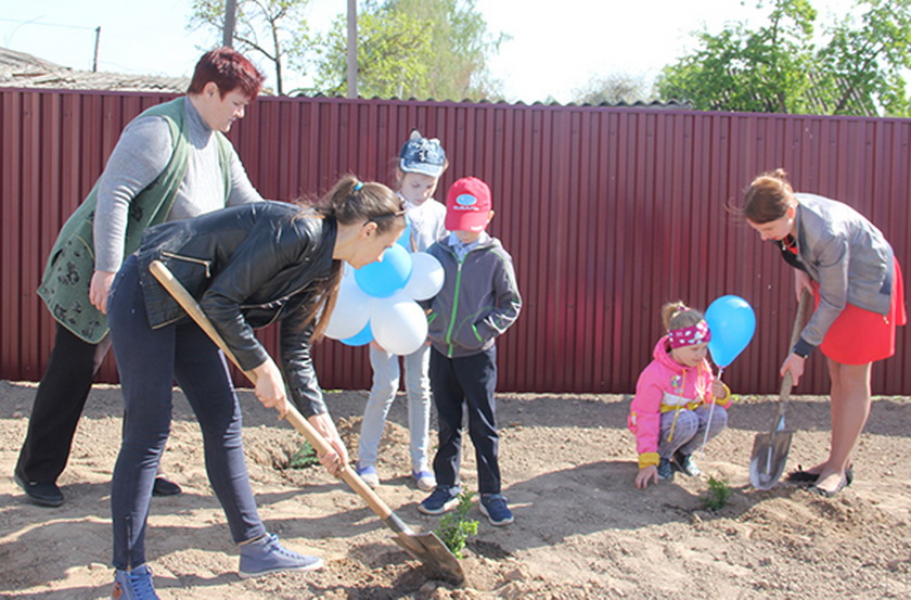 На территории Копыльского ТЦСОН 1 мая была посажена новая аллея
