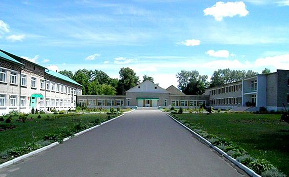 Ирландия продолжает помогать Копыльской вспомогательной школе-интернату