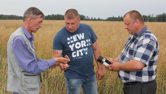 ■ Анатолий Метельский, Владимир Потоцкий и Александр Бабура проверяют влажность зерна