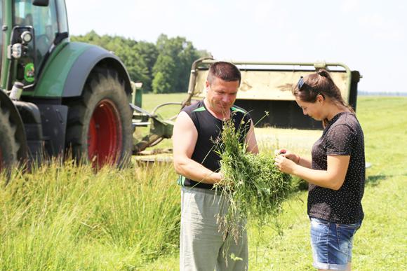 Награды за трудовые достижения продолжают получать передовики кормозаготовительной кампании на Копыльщине