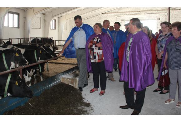 В Копыльском районе подвели итоги работы отрасли животноводства за 5 месяцев текущего года
